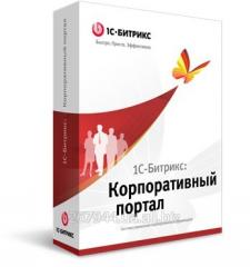 1C-Bitriks: Conference website