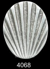 Ring 4068