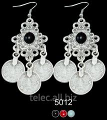 Earrings 5012