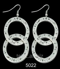 Earrings 5022