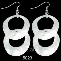 Earrings 5023
