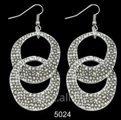 Earrings 5024