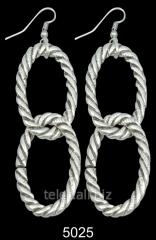 Earrings 5025