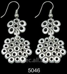 Earrings 5046