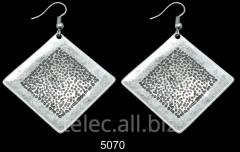 Earrings 5070