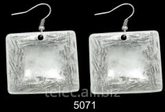 Earrings 5071