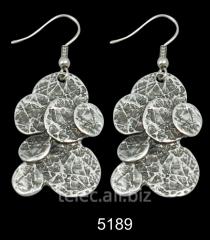 Earrings 5189