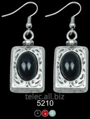 Earrings 5210