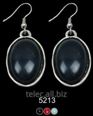 Earrings 5213