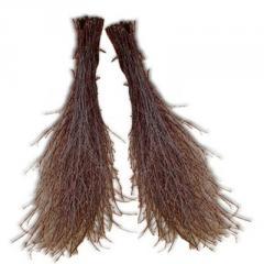 He broom is birch