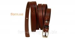 Belt female W10001