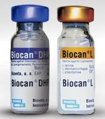Biokan CHGPP+L, Biocan Dhppi + L, 1d