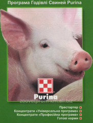 Purine (Purina) concentrated starter for pigs, 10
