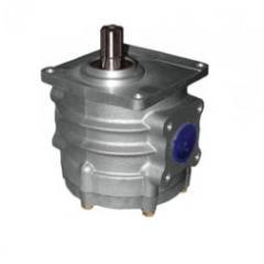Pump gear ANTEY NSh100A-3