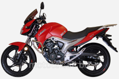 LIFAN KP-150 (IROKEZ), motorcycles road to get new