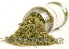 Oregano greens dried