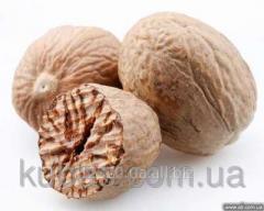Whole nutmeg ABCD
