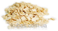 Celery dried root of 10*10 mm