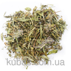Thyme - thyme dried