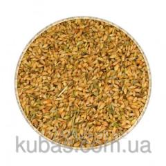 Utskho-suneli grain
