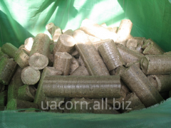 Briquettes from a tree