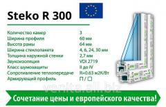 Steko R300 window