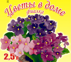 Soil mix for violets on the basis of biohumus
