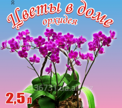 Soil mix for orchids on the basis of biohumus