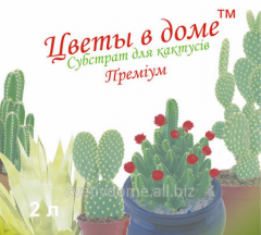 Субстрат для кактусов (премиум) Цветы в доме 2 л (для выращивания суккулентов: кактусов, алоэ, агавы)