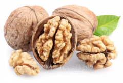 The walnut is whole