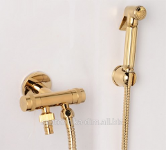 Hygienic shower with the Gimbox Gold mixer, the