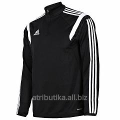 Raglan of game Adidas CONDIVO14 SWEAT TRG TOP SR,