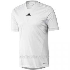 T-shirt sports game Adidas CAMP 13 Z20524, art.