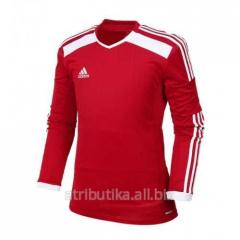 T-shirt sports game Adidas Regi LS 14 JRY F50025,