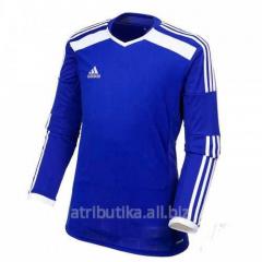 T-shirt sports game Adidas Regi 14 F50024, art.