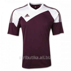 T-shirt sports game Adidas Toque 13 Z20272, art.