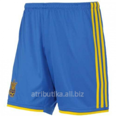 Shorts sports game national team of Ukraine of