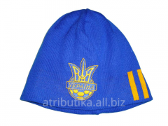 Cap sports Ukraine FFU 3 floor 102, art. 102