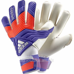 Gloves goalkeeper Adidas Predator Pro Class, art.