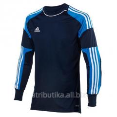 Raglan goalkeeper Adidas Revigo 13 GK, art. Z20122