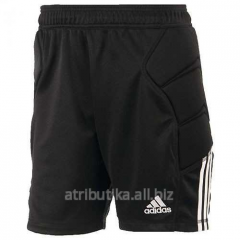 Football goalkeeper game Adidas TIERRO13 GK SHO