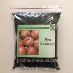 Onions Chalcedony 100 of