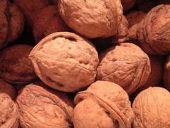 Орехи грецкие, орехи грецкие на экспорт, грецкие