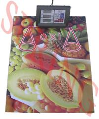 Scales electronic OXI commodity 600 kg floor