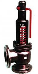 Safety valve T-31 of M