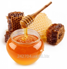 Purchase and sale of flower honey: lime,