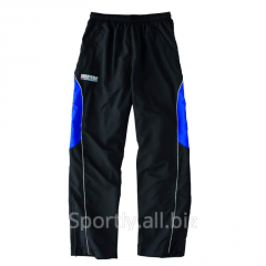 Sports pants, trainer's trousers on soccer to