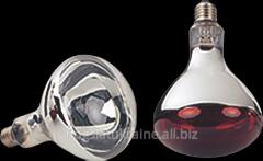 Лампа для обогрева IN150R125/C/2