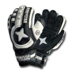 Goalkeeper Protect Basic HG Artikul:2559 gloves,