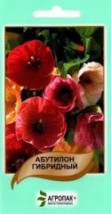 Abutilon hybrid mix (0,1 g)